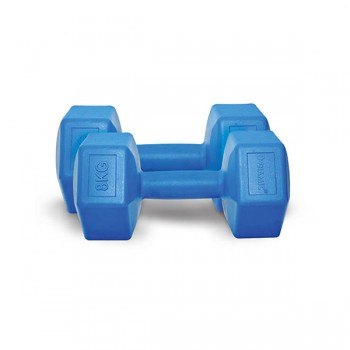 DYNAMIC FASHION PLASTIC DUMBBELL LACVRT 8KG